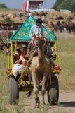 Pushkar, India. Stock Image