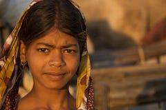 Pushkar, India - novembro 2011 Imagens de Stock Royalty Free