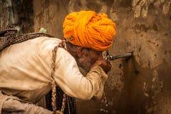 Pushkar-Kamel angemessenes 2014 lizenzfreies stockfoto