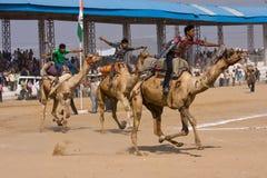 Pushkar Uczciwy Rajasthan, India (Pushkar Wielbłądzi Mela) zdjęcie stock