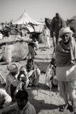pushkar wielbłądzi uczciwi ind Zdjęcie Royalty Free