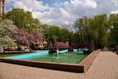 Pushkin Boulevard in Donetsk. Сity park in the spring with trees, a fountain, sky, without people Royalty Free Stock Image