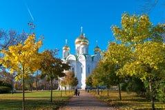pushkin selotsarskoye St Petersburg Ryssland Kyrka av martyren för St Catherine Royaltyfri Fotografi