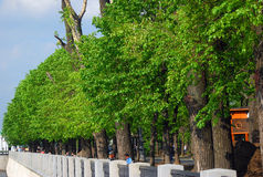 Pushkinskaya embankment in Moscow, Gorky park in summer. Royalty Free Stock Images