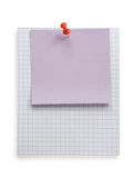 Pushpin i nutowy papier na bielu Obraz Stock