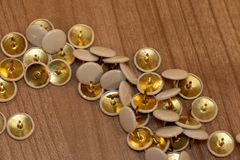 Pushpins for office usage copper and white color royalty free stock images