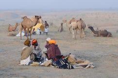 Puskar Camel Fair November 2009 - 3 Stock Photography