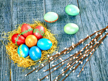 Pussy-верба пасхи и пасхальное яйцо на подлинной предпосылке карточка пасха счастливая Стоковая Фотография