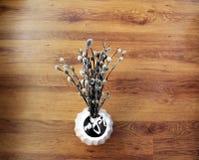 Pussy-Weidenniederlassungen in einem Vase Stockbilder