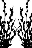 Willow branch silhouette. Silhouette of willow buds and branches Stock Illustration