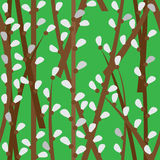 Pussy-willow seamless green pattern  with curled Stock Photo