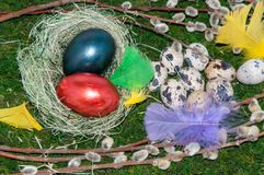 A pussy-Willow sprig and Easter egg. Royalty Free Stock Photo