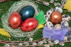 A pussy-Willow sprig and Easter egg. Stock Images