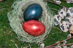 A pussy-Willow sprig and Easter egg. Royalty Free Stock Image