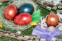 A pussy-Willow sprig and Easter egg. Stock Photo