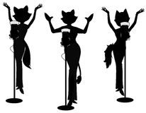 Free Pussycat Girl Band Stock Photography - 45093282