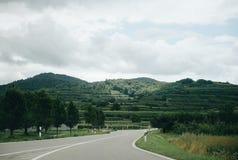 Pusta asfaltowa droga przez winniców zdjęcia stock