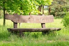 Pusta drewniana ławka pod drzewami Obraz Royalty Free