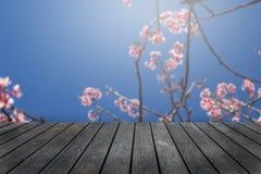 Pusta drewniana stołowa platforma z Czereśniowego okwitnięcia tłem zdjęcie royalty free