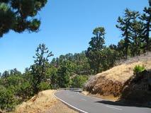 Pusta droga w Hiszpania wyspa kanaryjska Tenerife Los Angeles Palma Obraz Royalty Free