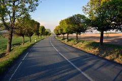 Pusta droga w republika czech Zdjęcia Royalty Free