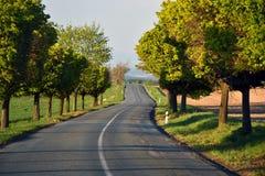 Pusta droga w republika czech Fotografia Royalty Free