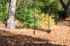 pusta dziecko arkany huśtawka w jesień parku obrazy royalty free