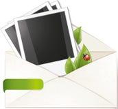 pusta koperty ramy zieleń opuszczać fotografię Fotografia Royalty Free