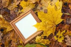 Pusta kwadratowa drewniana rama w kolorze żółtym spadać opuszcza Odgórny widok Fotografia Royalty Free