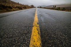 Pusta mokra pustynia asfaltu bruku droga z żółtym autostrady ocechowaniem wykłada Zdjęcia Royalty Free