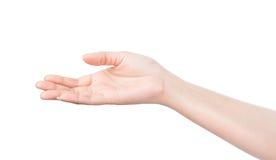 Pusta otwarta kobiety ręka na białym tle Fotografia Royalty Free