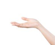 Pusta otwarta kobiety ręka na białym tle Zdjęcie Stock