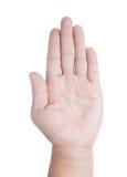 Pusta palmowa ręka obrazy royalty free