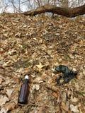 Pusta Piwna butelka w liściach Zdjęcie Royalty Free