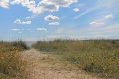 pusta plaża Zdjęcie Stock
