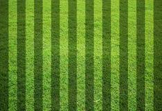 pusta śródpolna trawa Obraz Stock