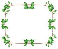 Pusta rama z zielonymi obfitolistnymi granicami royalty ilustracja