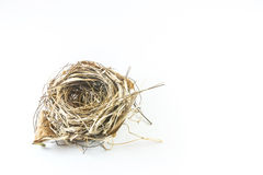 puste gniazdo ptaka Fotografia Stock