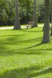 puste krzesło park Obrazy Royalty Free