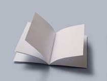 Puste miejsce otwarta książka Fotografia Stock
