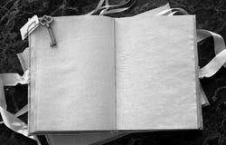 Puste strony otwierali rocznik książkę na stole Fotografia Stock