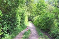 Puste wiejskie drogi zak?adaj? w p??nocnym Germany z otaczaj?cymi polami i drzewami zdjęcia royalty free