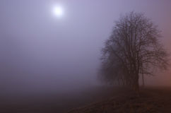 Pustkowia przy aksamitną mgłą Obrazy Royalty Free