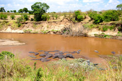 Pustkowie afrykański krajobraz Zdjęcie Stock