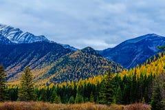 Pustkowie jesieni kolory fotografia stock