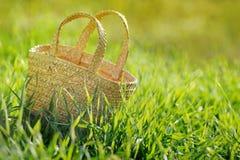 Pusty łozinowy kosz W świeżej zielonej trawie Obraz Stock