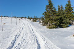 Pusty śnieg zakrywał drogę w zima krajobrazie w Gigantycznych górach Obrazy Stock