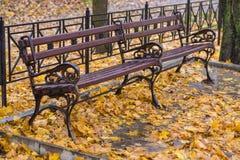 pusty ławka park Zdjęcia Stock
