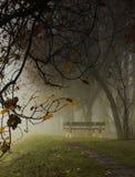 pusty ławki parku Zdjęcie Royalty Free