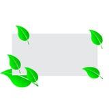 Pusty bielu prześcieradła papier i zieleni świezi wiosna liście Zdjęcie Royalty Free